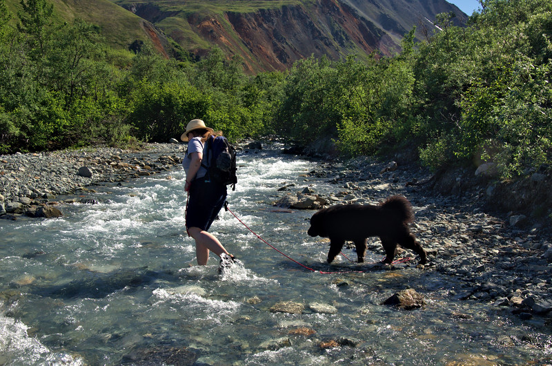 Kate and Moose lead the way across the stream