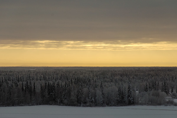 Looking over the Tanana Valley