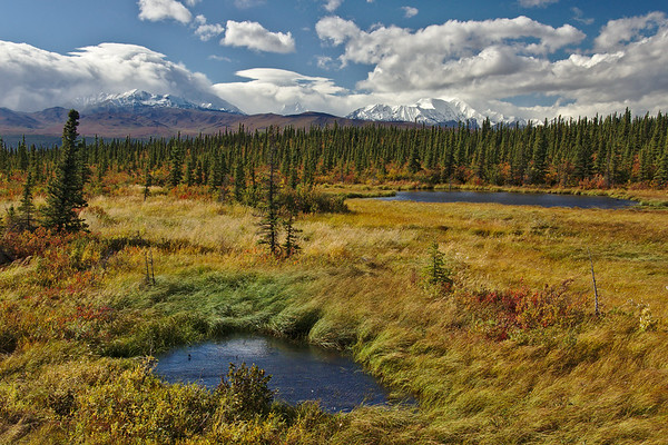September - Fall day on the Richardson Highway