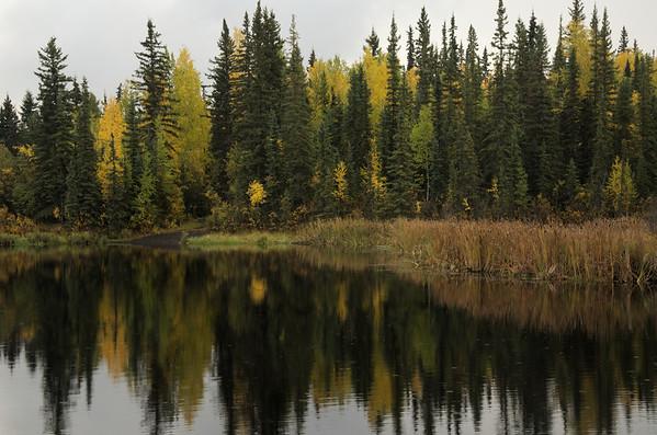 Ballaine Lake, Faibanks
