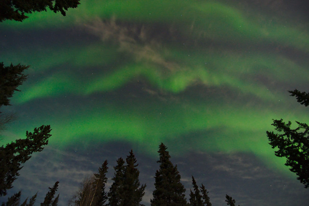 Last night the show started while it was still twilight. As the sky became darker it was more apparent how bright the moon was - as it strongly illuminated the few clouds under the aurora.