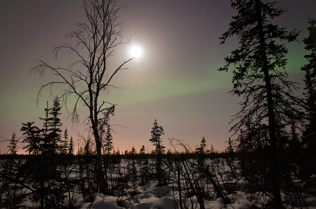 Auroral band to the south, squished between the bright moon and Fairbanks city lights.