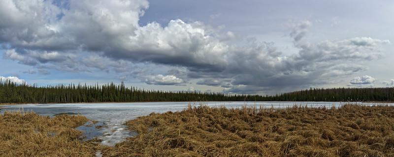 Smith Lake - Spring Panorama