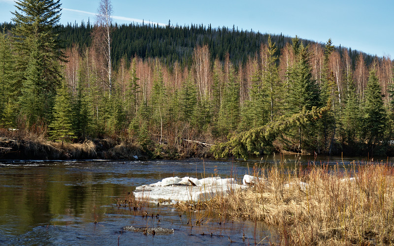 Tolovana River