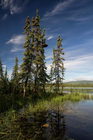 Gorgeous Day at Smith Lake | 2014-08-07