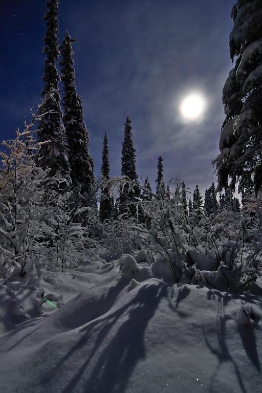 Bright Snowy Night