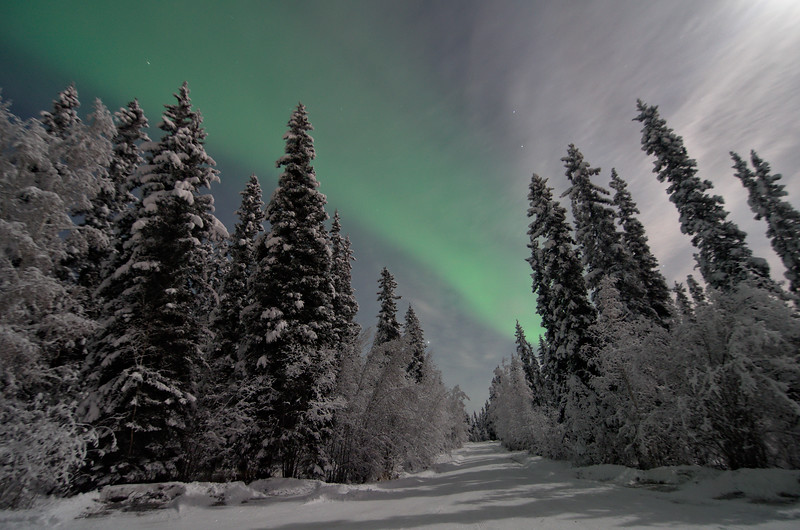 The aurora was having a tough time showing through the clouds against the bright moon light, but it came out for a while.