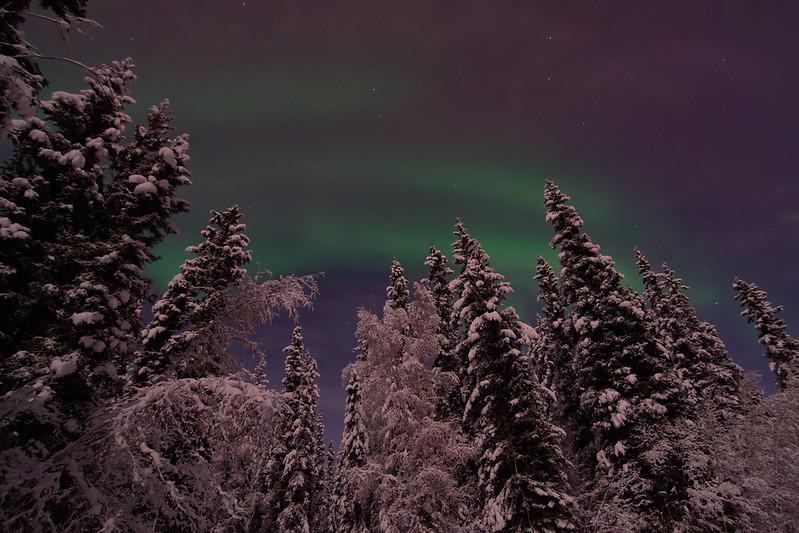 Aurora before the clouds
