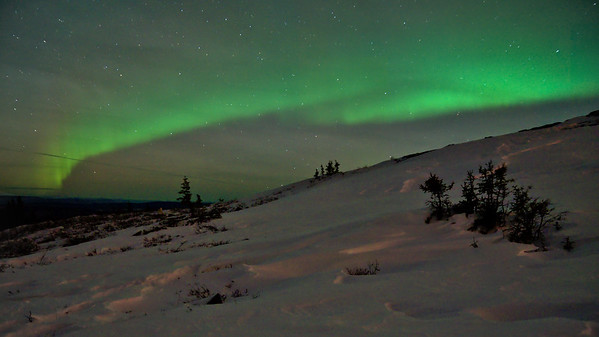 Snow, spruce trees, and the Northern Lights.