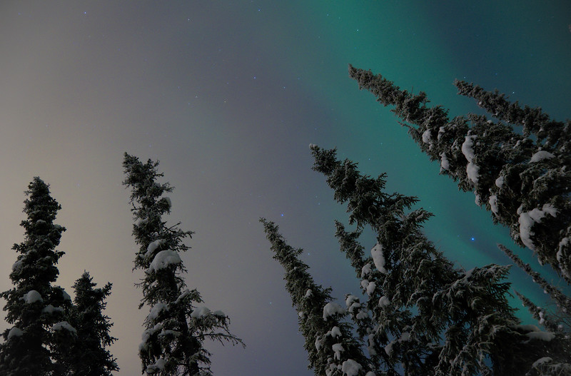 At around 8 pm on the winter solstice the aurora showed up, followed immediately by clouds from the south. Light pollution from Fairbanks really wrecks the view, especially with clouds.