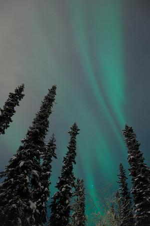 Aurora shines through