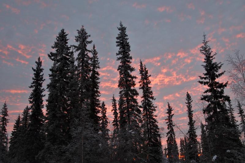 Boreal Sunrise