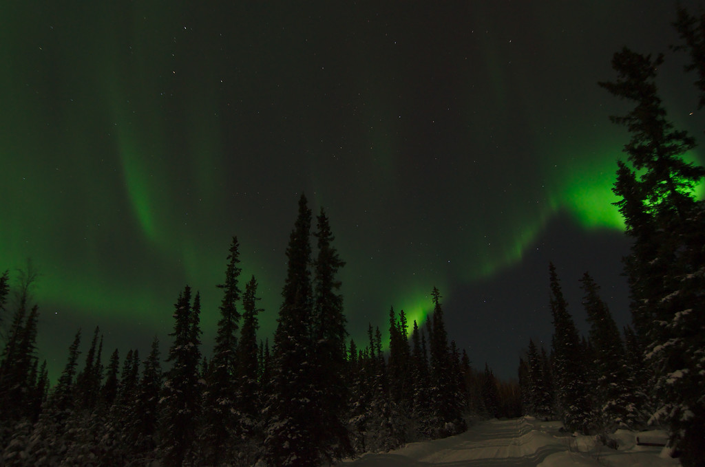 Northern lights like tendrils in the sky
