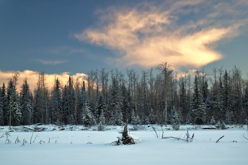 On the other side of the Tanana