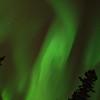 Fairbanks Skies