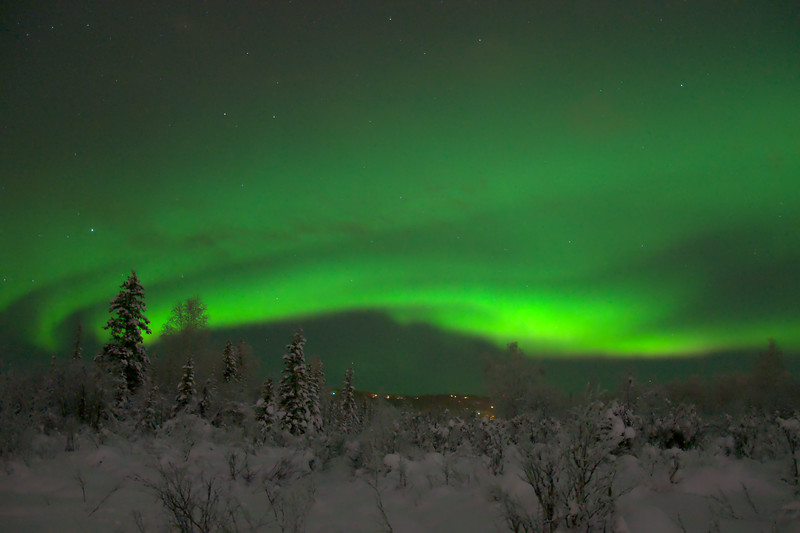 I took the dog for a walk to watch the aurora borealis. He got upset with me while I was taking pictures and making a timelapse because he doesn't like to sit still while we are outside. We eventually had to go home. It was a nice display though!