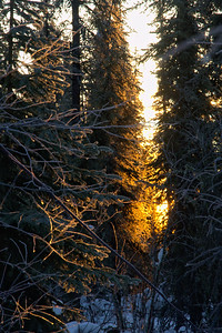 Light slips through