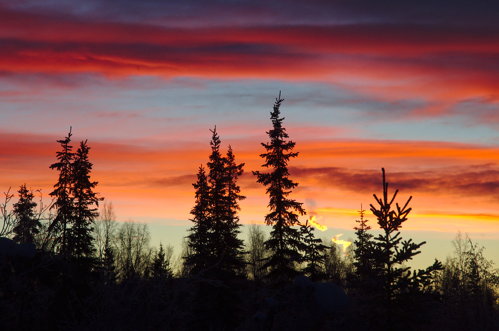 A typical January sunrise in the Alaska interior.
