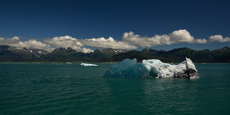 Icebergs from the Columbia Glacier floating in Prince William Sound. This one rolled, exposing the blue ice that was once under water. The Valdez area is stunningly beautiful.