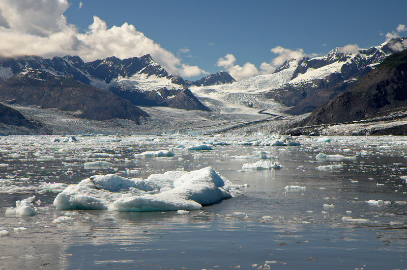 And many, many icebergs. Prince William Sound - Alaska.
