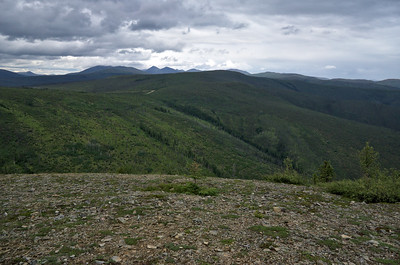 View of the White Mountains from US Creek Road