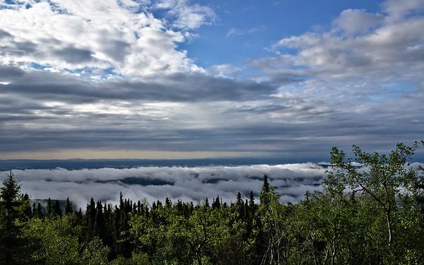 Fog in the Tanana Valley