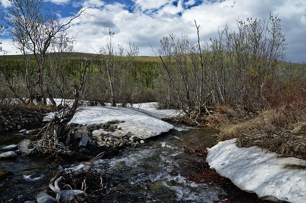 Small stream crossing on the Nome Creek Trail. Still a bit of snow. The cold water felt good on my feet.