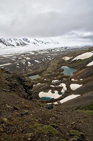 Alpine ponds