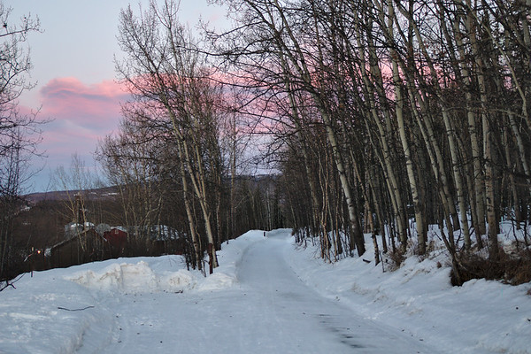 Trail that runs between West Ridge on the UAF campus and Sheep Creek Road at sunrise.