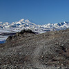 Denali from the Alpine Trail.