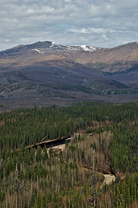 Looking over the North Fork of the Chena River from Angel Rocks.