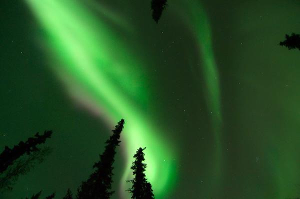 Bright Aurora!