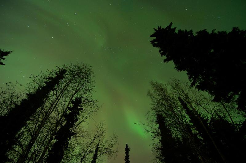 Diffuse aurora-filled sky