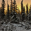 Another Boreal Sunrise