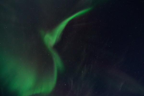 Aurora Corona 5