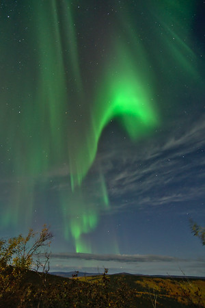 Autumn under the northern lights