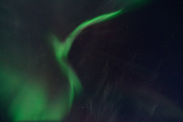 Aurora Corona 4