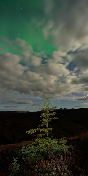Diffuse Aurora over clouds