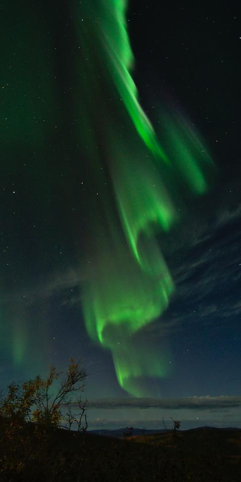 Aurora Curtain - Vertical Panorama
