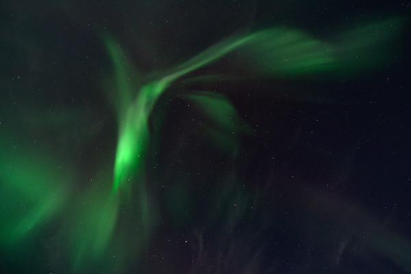 Aurora Corona 3