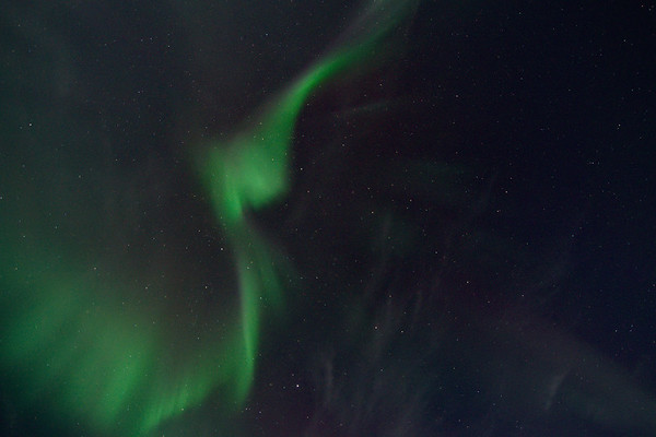 Aurora Corona 6