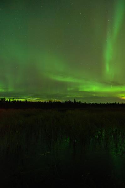 Active aurora