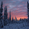 Good Morning!