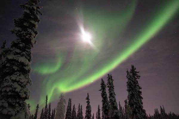 Bright Moon and Aurora Borealis