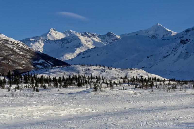 Mt. Blackcap and White Princess looming over the Castner Glacier and Castner Creek.