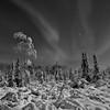 Aurora Landscape in Black and White