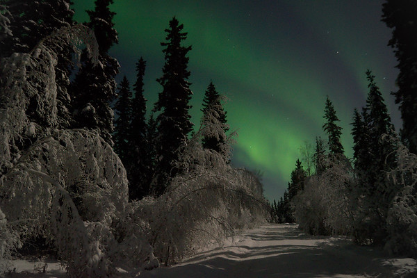Aurora over our road