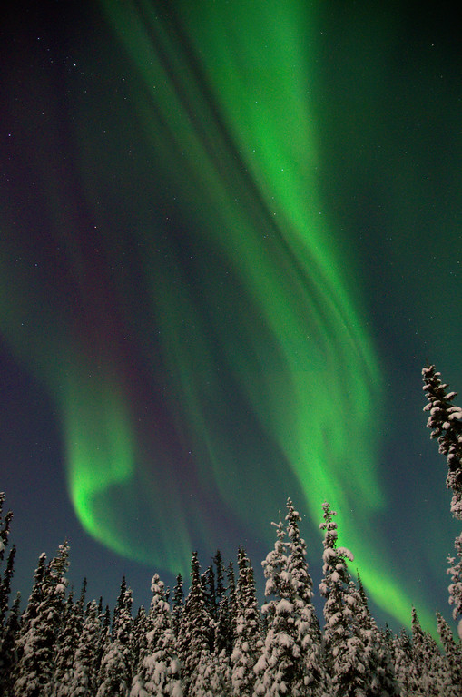 Aurora Borealis and Moonlight