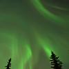 Diffuse Aurora Filling the Sky