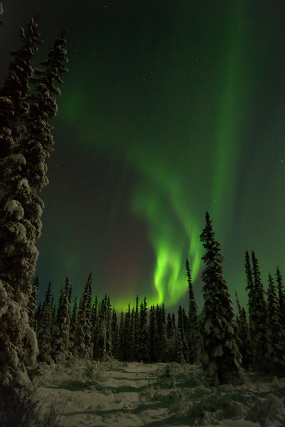 "Photo of the week — ""Northern Lights"""